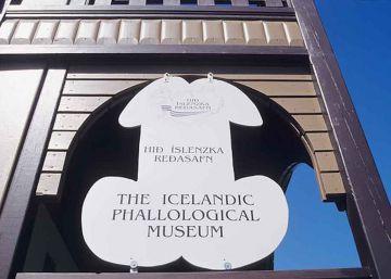 El museo de penes más grande del mundo existe y está en Islandia