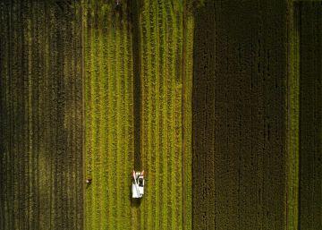 Agricultura: problema y solución