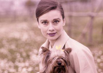 ¿Trabajó Audrey Hepburn para la resistencia en la II Guerra Mundial?