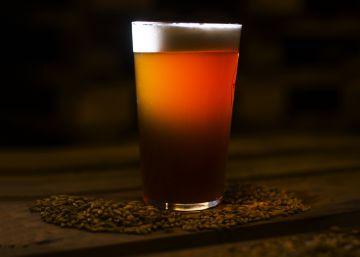 Así se fabrica una cerveza artesanal