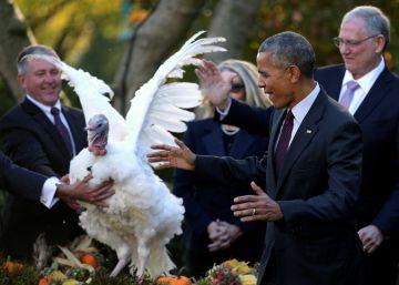 Los últimos pavos de Obama