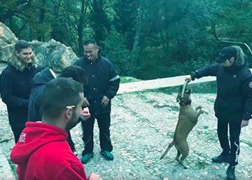 Jarfaiter se pone tierno en el videoclip dedicado a su pueblo