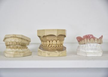 El reino de los dientes está en Tielmes