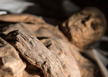 La momia de un niño reescribe la historia de la viruela