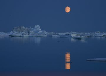 Estas son las consecuencias globales del deshielo del Ártico