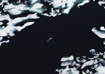 Un verano sin hielo en el Ártico