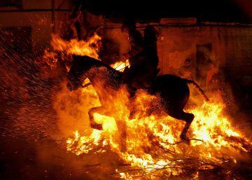 Un caballo salta una de las hogueras de San Bartolomé de Pinares.
