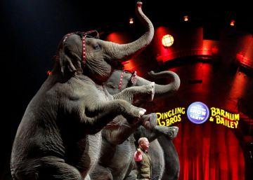 Érase una vez un circo sin elefantes