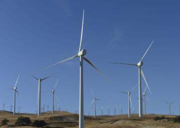 Spain breezes into record books as wind power becomes main source of energy