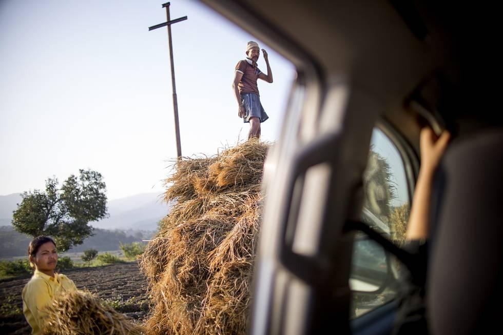 """""""Compartir labor, sin uno ser más que el otro. Un sólo objetivo, un único fin"""". Un hombre y una mujer cargan un carromato con paja el ganado en una zona rural de Pauvathok, Nepal."""