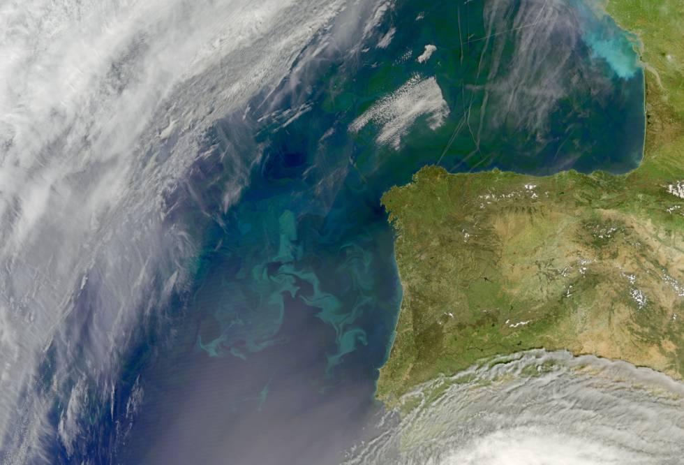 Explosión de fitoplancton frente a las costas de la península ibérica y, al norte, en el golfo de Vizcaya.