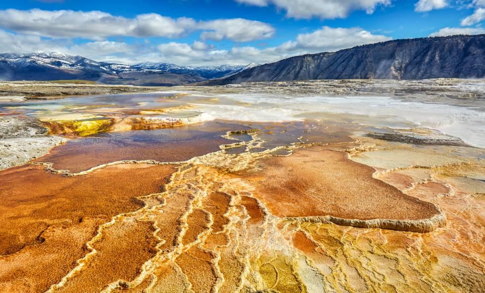 Patrones de formaciones de cianobacterias y travertino, en una zona del Parque de Yellowstone, (EE UU).