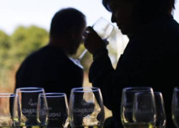 Wine consumption rises in Spain for first time in decades