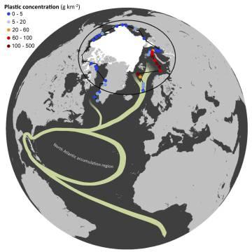 El mapa muestra las áreas de muestreo durante la expedición, el flujo de la corriente termohalina y la concentración de plástico por Km2.