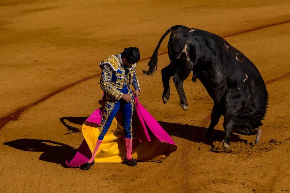 Corrida de toros en La Maestranza, Sevilla