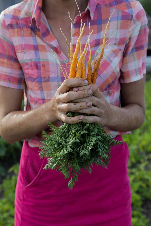 Jardiner a esta mujer lo sabe todo sobre huertos en las for Todo sobre jardineria