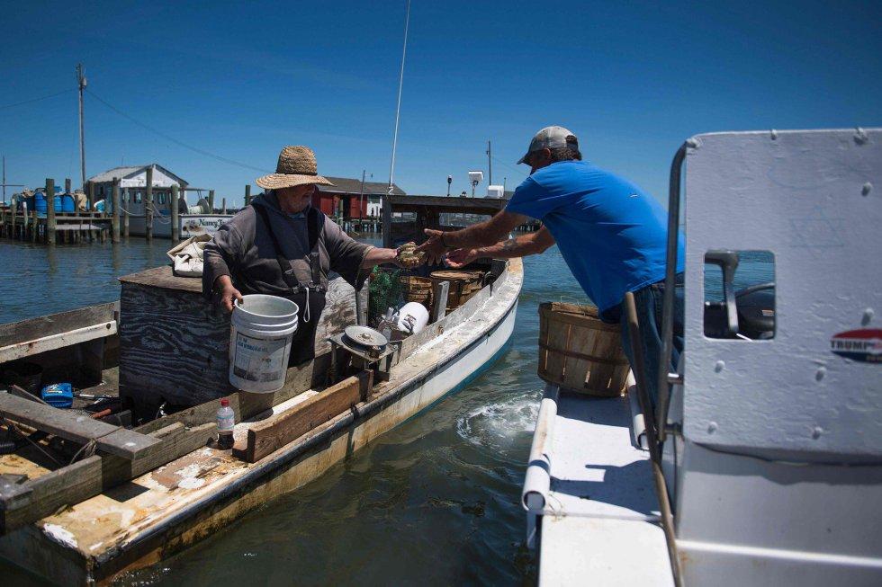 El puerto, pulmón económico para estas familias que viven de la pesca de cangrejos, está actualmente amenazado por la erosión. Su entrada se ensancha, haciéndolo más vulnerable a las tempestades.