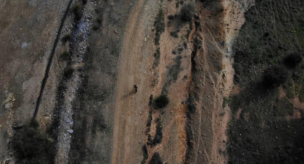 Un hombre pasea por el corredor verde creado en la zona afectada por el vertido de Aznalcóllar hace 21 años. La imagen refleja una zona con vegetación renacida y otra donde no ha crecido nada en estos años por la contaminación latente.rn