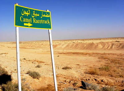 Señalización de un circuito de carreras de camellos en las cercanías de Damasco, Siria