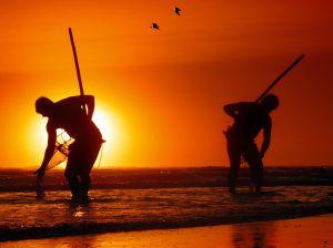 Dos pescadores buscando coquinas en una playa de la costa de Huelva.