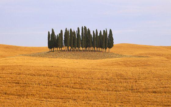 Cómo enamorarse de la Toscana