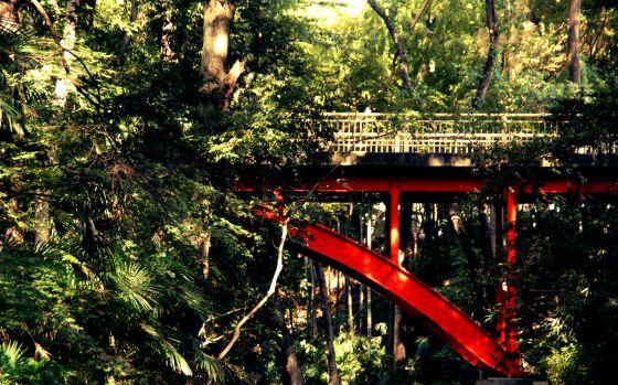Un valle secreto en el corazón de Tokio