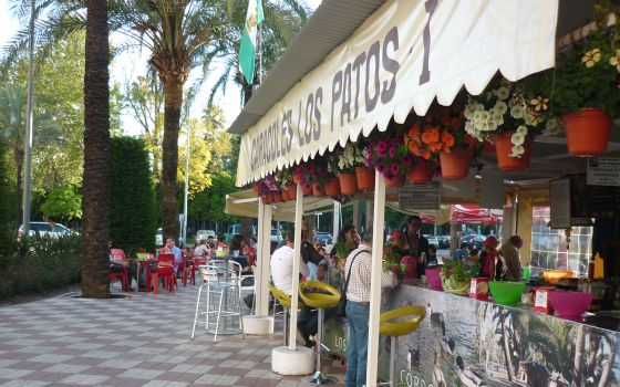 Uno de los 35 puestos de caracoles instalados en la ciudad de Córdoba. (El viajero, El País)