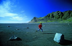 Una playa de arenas negras en la costa sur de Islandia.