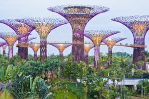 Gardens by the Bay, un parque urbano de 101 hectáreas en Singapur.