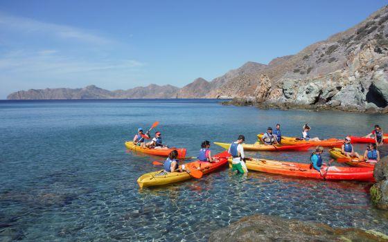 Cabo Tiñoso, un gran secreto mediterráneo