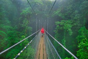 Puente colgante en el parque natural del Bosque Nuboso de Monteverde, en Costa Rica.