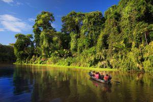 Canales del parque nacional de Tortuguero, en Costa Rica.