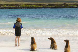 Una turista junto a tres lobos peleteros en las islas Galápagos.