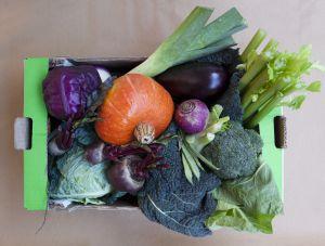 Comprar verduras por Internet.