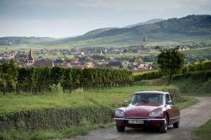Vista de la localidad de Kientzheim, en la ruta del vino de Alsacia (Francia).