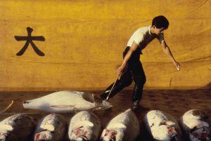 Un trabajador en el mercado de pescado de Tsukiji, en Tokio.