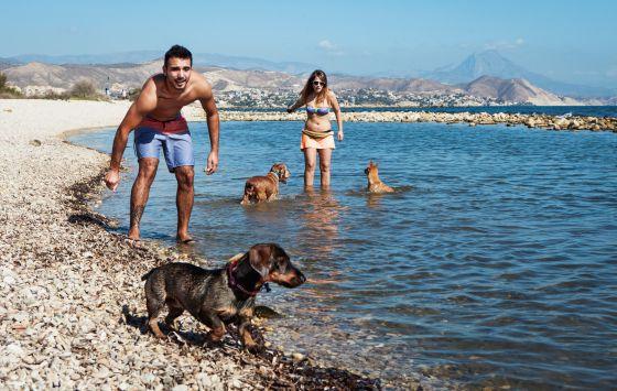 Playa Punta del Riu, en El Campello (Alicante).