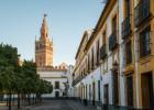 Flamenco y gastronomía en Sevilla
