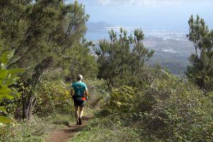 Rutas senderista en las cercanías de Teror, al norte de Gran Canaria.