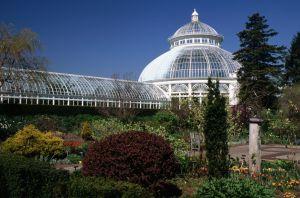 El Jardín Botánico del Bronx.