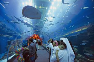 Tiburones y rayas en el acuario del Dubai Mall, en Dubái.