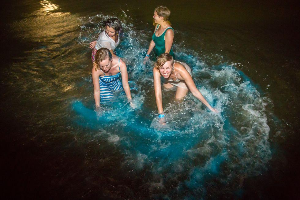 Alucinando con la bioluminiscencia