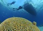 Cuba para amantes del buceo