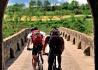 El Camino, en bici