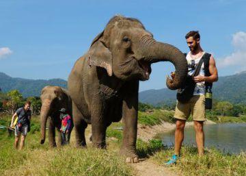 Un refugio para elefantes en Tailandia