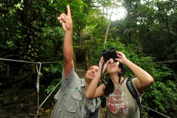 Observación de aves en el selvático Valle de Antón, en las tierras altas de Panamá.