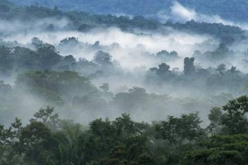 Panorámica de los montes Mayas desde Lubaantun, en Belice.