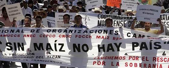 Protestas en Ciudad de México contra la subida del precio de la torta de maiz