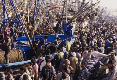 Un grupo de personas espera descargar pescado en el puerto de Agadir, al sur de Marruecos.