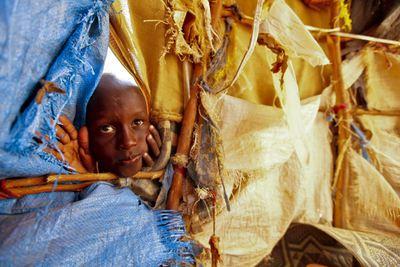 FOTOGALERIA: La vida entre lonas